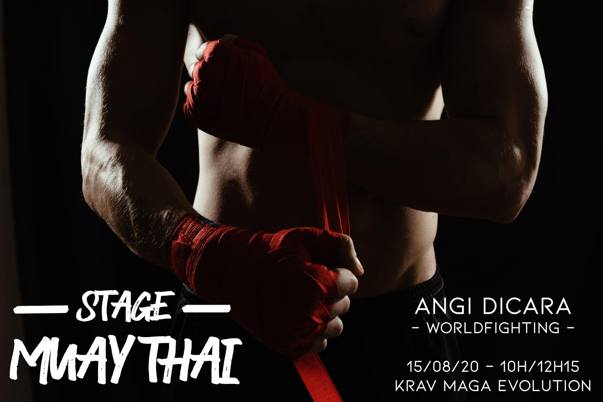 Stage krav maga Muay Thai